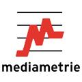 Étude : 41 % des Français connectés au net via leur mobile au troisième trimestre