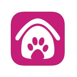 Une application pour adopter un chien ou un chat abandonné