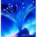 France Télécom-Orange et SFR vont couvrir en fibre optique l'ensemble des foyers de Toulouse Métropole