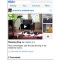 Frickr propose la géolocalisation des photographies pour l'iPhone et Android