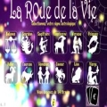 L'application « La roue de la vie » disponible sur iPhone et iPad
