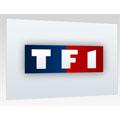 L'application TF1.fr pour l'iPhone devient gratuite