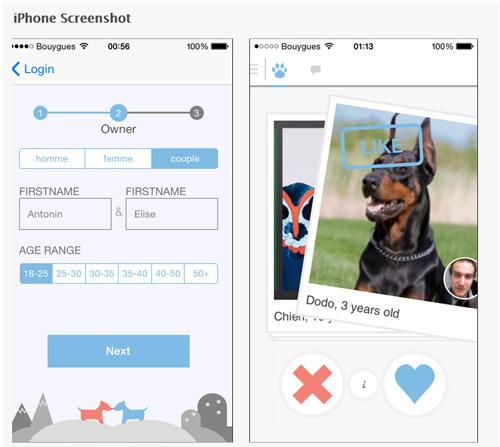 Tindog : une application de rencontres pour chiens et maîtres