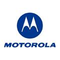 Morotola leader des mobiles bon marché
