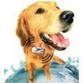 Retrouvez votre chien grâce à votre mobile