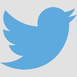 Twitter ne permet plus à la police d'utiliser le logiciel d'analyse Dataminr