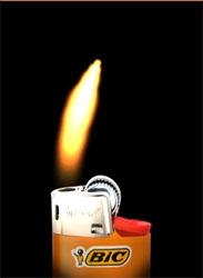 My BIC lighter :
